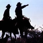216-cowboy_full_600